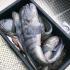 Amberfish Stonies