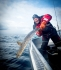 Havsfiskeguiden_catch_and_release