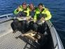 Arnoy Brygge zufriedene Angler