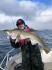 Codfish (13)