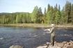 Fliegenfischen am Fluß in Norwegen