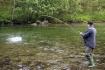 Drillaction beim Fliegenfischen
