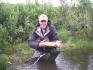 tolle Forelle aus dem Fluß