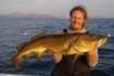 Dorschfischen in Norwegen