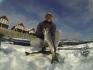 Seelachs auf die kalte Art in Bolga