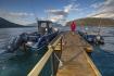 Bootssteg in Rotsund Seafishing