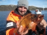 Rotbarsch aus dem Dafjord