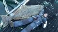 Dafjord Havfiske Buttkracher 170 kg