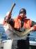 Dorsch angeln bei Sonnenschein in Norwegen