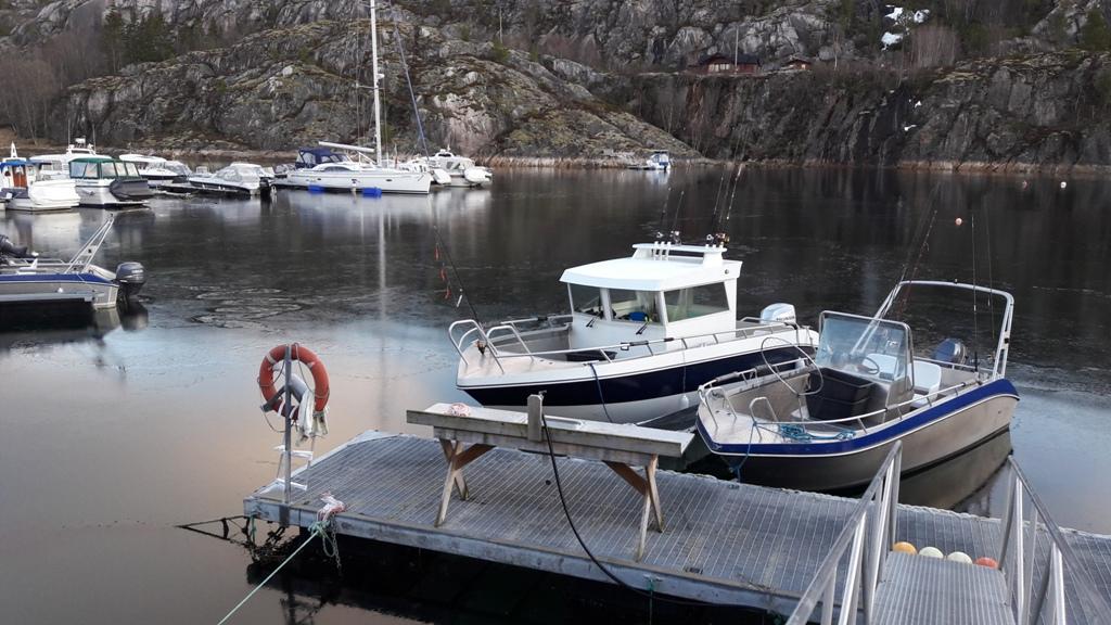 efjord sjohus dicke fische zum kleinen preis dintur angeln in norwegen. Black Bedroom Furniture Sets. Home Design Ideas