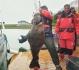 Eidet Havfiske Heilbutt Steg