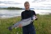 toller Lachs aus Elgsnes