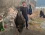 Elgsnes Butt 50kg Zoellner Toppsundet