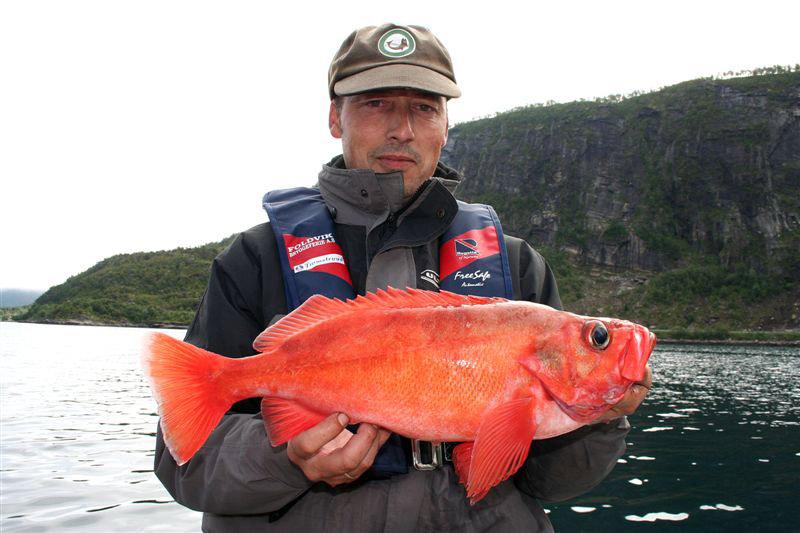 морская рыбалка стоимость туров