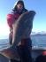 Angler Schroeder mit Heilbutt
