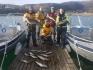 Frovag Havfiske Pollackstrecke