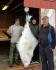 Grotavaer Rorbu 78 kg Butt