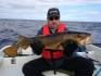 Hasvag Fiske Dorsch