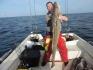 Hasvag Fiske 24 Leng schwer zu stemmen