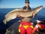 Hasvag Fiske 24 viele Leng