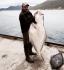 43 kg Heilbutt finnischer Angler
