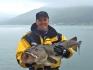 24 kg Dorsch Havness