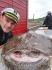 Helgeland Fjordferie Seeteufel 21kg