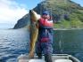 Sonne satt und top Fangerfolge im Norwegenurlaub