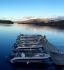 Leka Brygge Bootsflotte