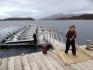 Bootssteg in Leka Brygge