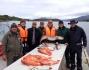 bunte Fischpalette Leka Brygge