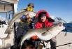 Anglerglück: Skreifischen
