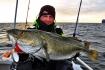 Loppa Havfiske Dorsch 28 Pfund