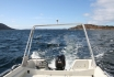 auf dem Weg zu den Fischgründen
