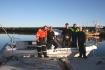 Gruppenbild mit herrlichen Norwegenfischen