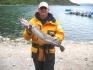 Fisch am Hafen