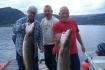 Trio mit schönen Fischen