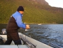 Fisch im Drill