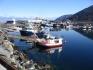 Marina in Norwegen