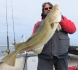 Dorsch Traena Arctic Fishing