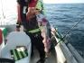 Ueberbeisser Traena Arctic Fishing