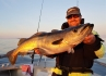 toller Pollack Traena Arctic Fishing