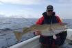 N-Molnarodden-marchfishing-cod121cm20kg-03