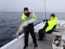 N-Molnarodden-marchfishing-cod124cm-03