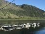 Loppa Havfiske Boote