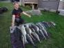 was für eine tolle Fischstrecke