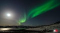 Buvik Brygge Nordlicht