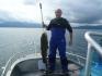 Angler im Glück am Ofotfjorden