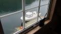 Orisbrygga Westnorwegen: Blick direkt auf den Bootssteg