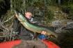 Vannsjo Hechtfischen Norwegen